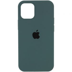Оригинальный чехол Silicone Cover 360 с микрофиброй для Iphone 13 Pro Max – Зеленый / Cactus